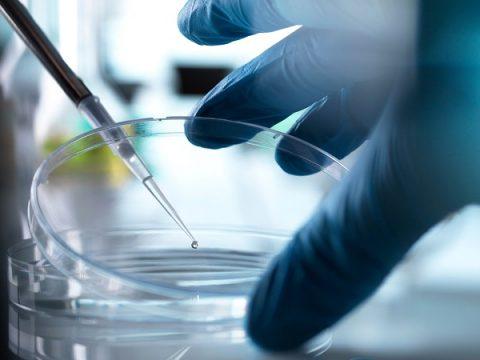 công nghệ tế bào gốc DNA